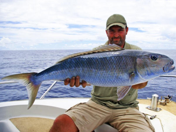 Big game fishing in the Algarve